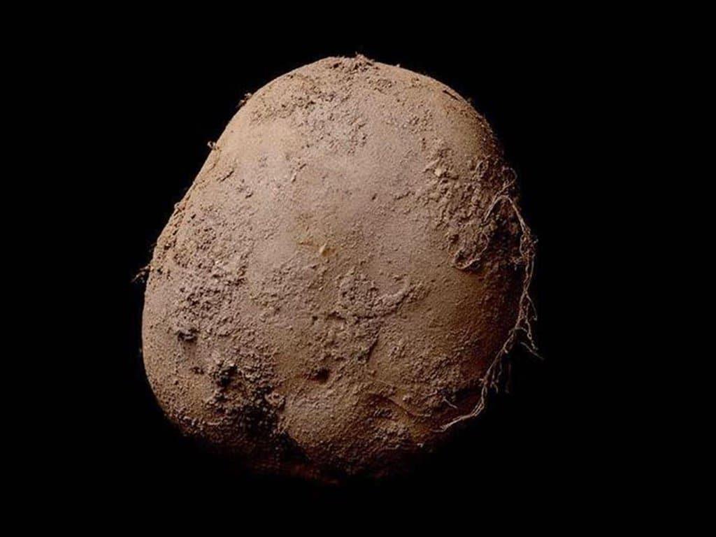 Коричневый картофель Эбоша