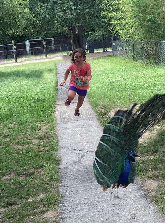 girl-running-from-peacock15