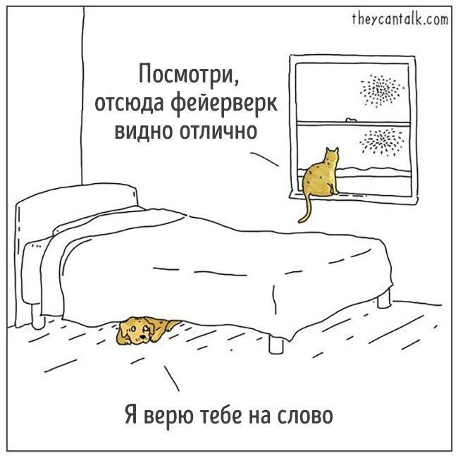 14 комиксов от художника, который, кажется, понимает язык животных рис 14