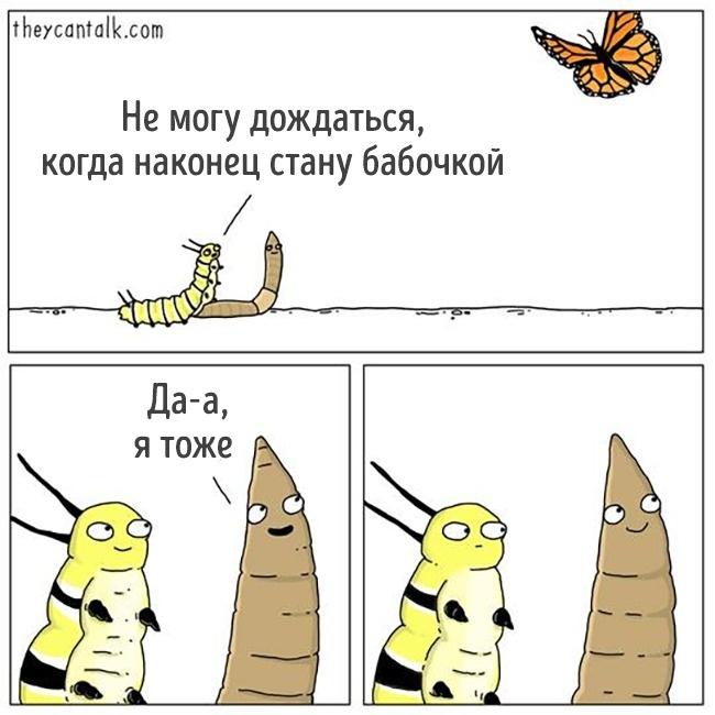 14 комиксов от художника, который, кажется, понимает язык животных рис 12
