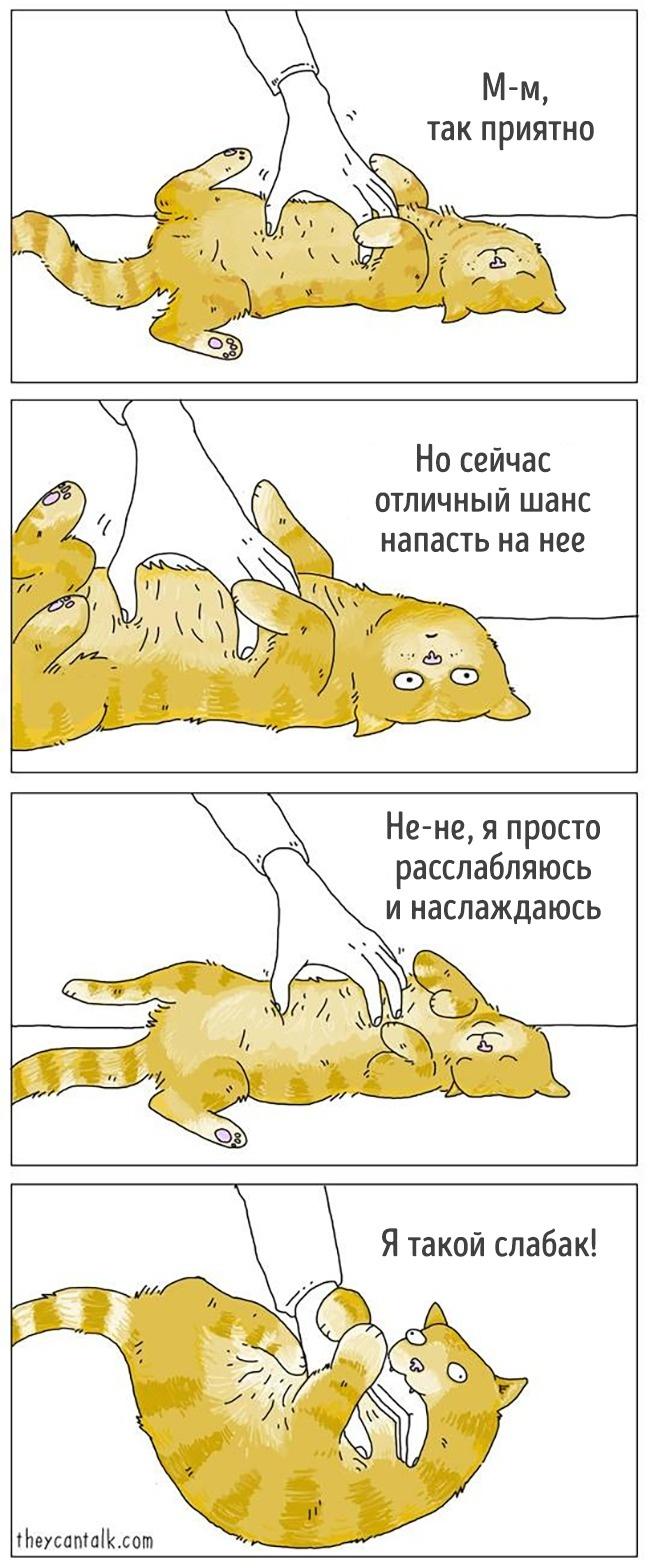 14 комиксов от художника, который, кажется, понимает язык животных рис 11