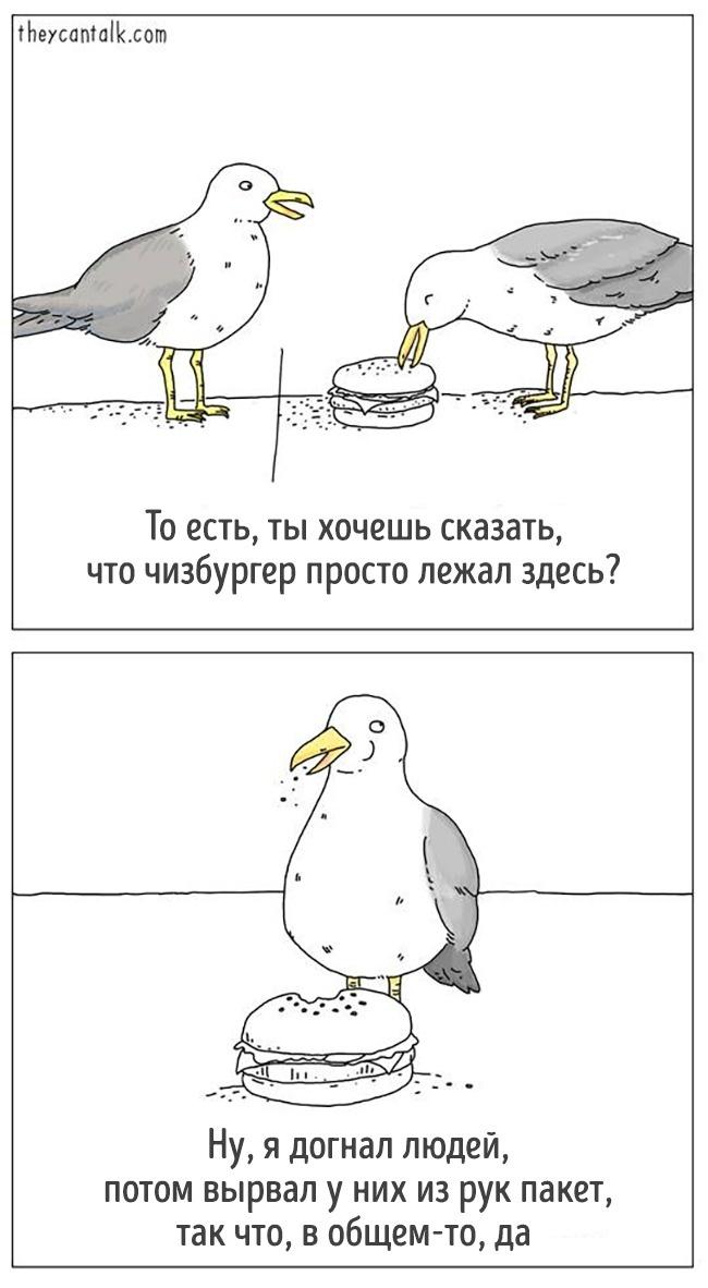 14 комиксов от художника, который, кажется, понимает язык животных рис 9