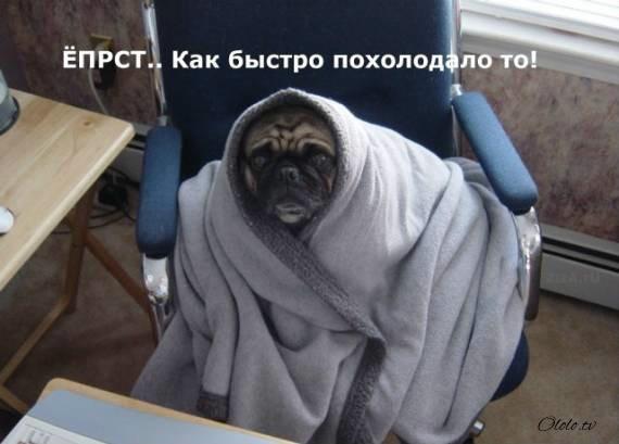 Вот почему осенью лучше уезжать из России
