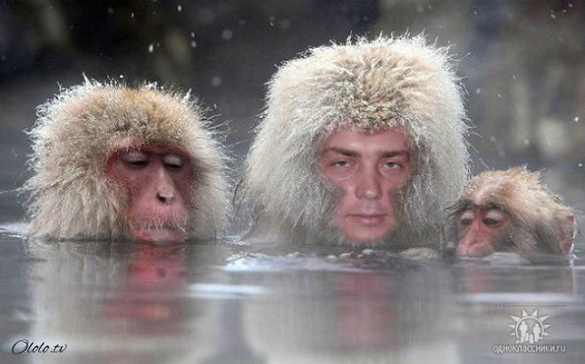Российский фотошоп — самый суровый фотошоп в мире рис 5