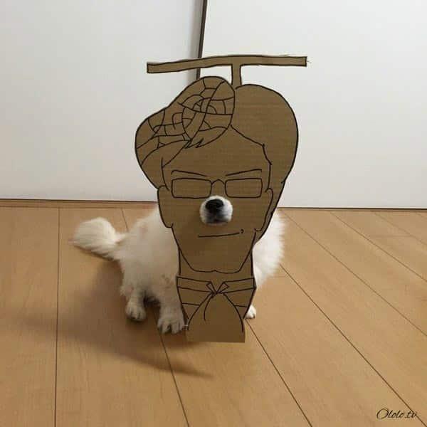 Девушка делает уморительные костюмы из картона для своей собаки рис 15