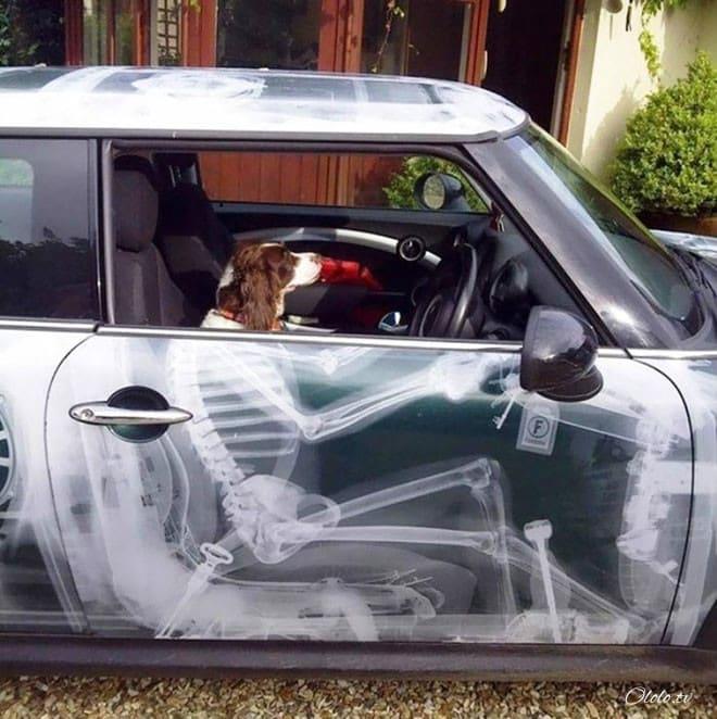 20 творческих автолюбителей, которые дополнили своё авто забавным креативом рис 6