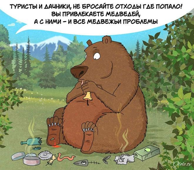 10 забавных, но правдивых комиксов, о правилах поведения с медведями