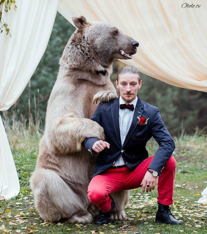 Свадьба по-русски: медведь благословляет жениха и невесту рис 4