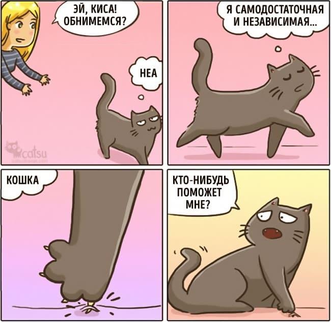 20 картинок о том, как меняется жизнь, если у вас завелся кот