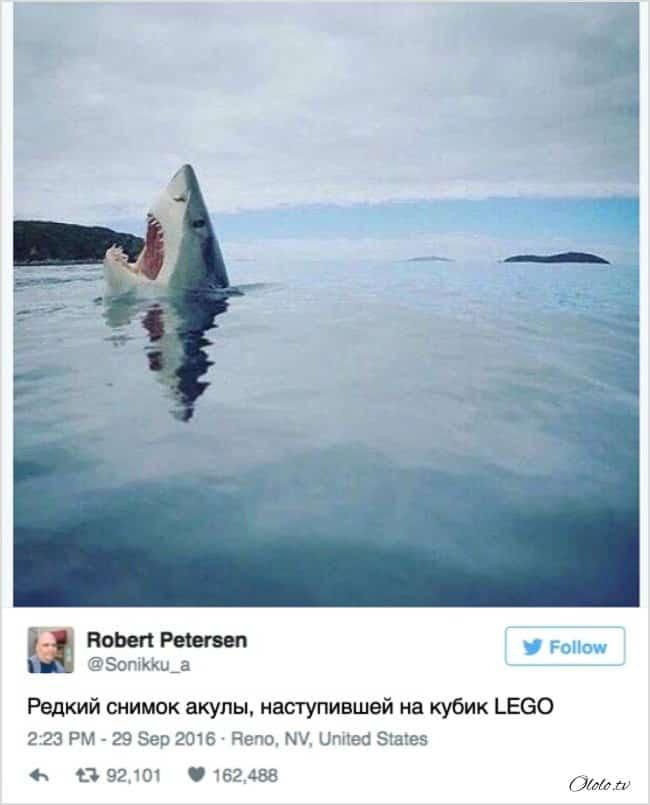 13 твитов, которые поднимут настроение на качественно новый уровень