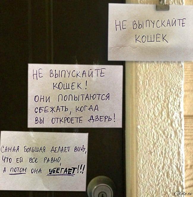 16 записок от людей, которые обожают своих соседей рис 8