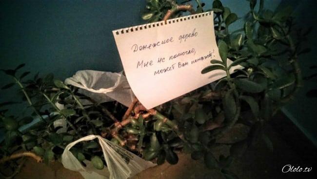 16 записок от людей, которые обожают своих соседей рис 3