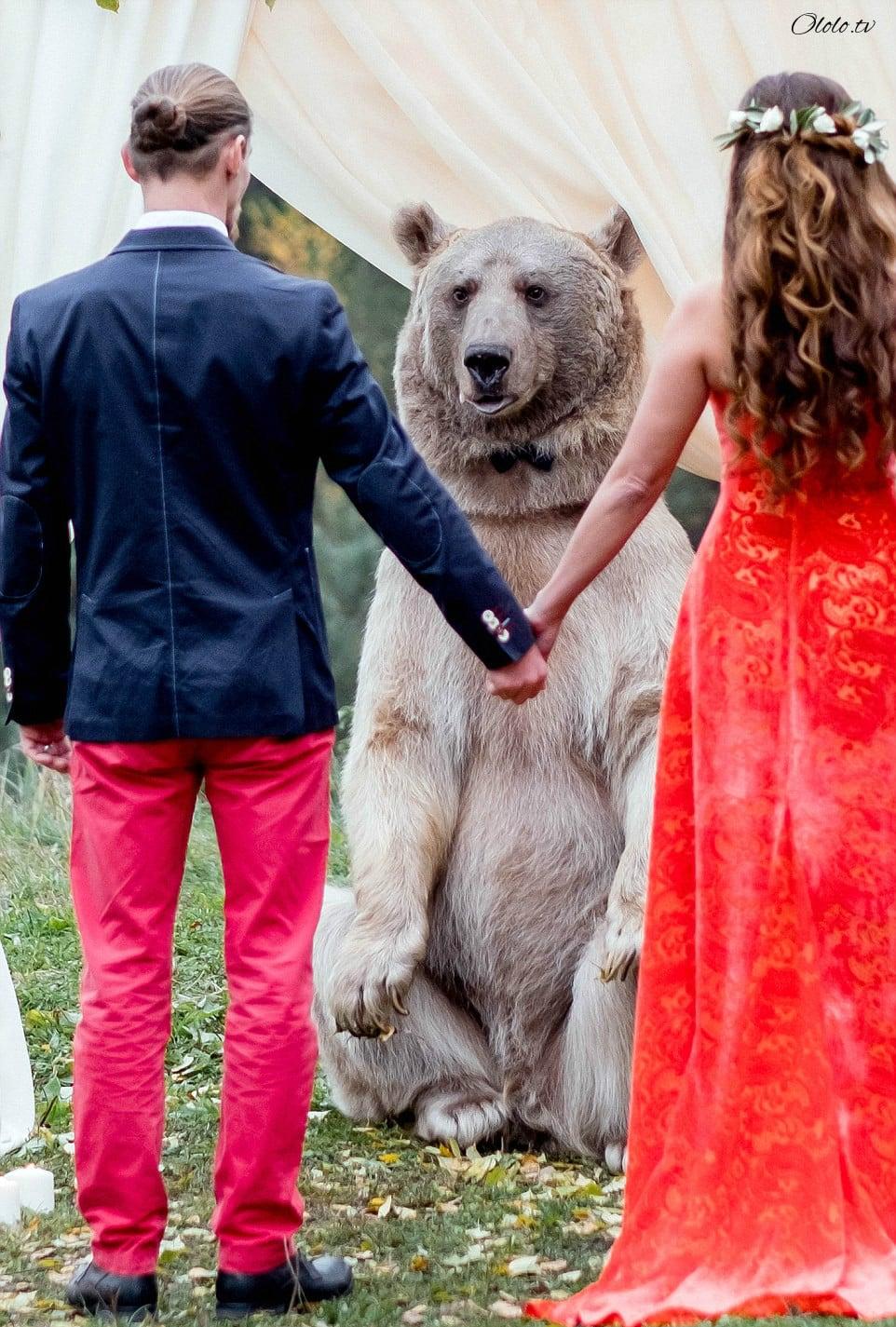 Свадьба по-русски: медведь благословляет жениха и невесту рис 7