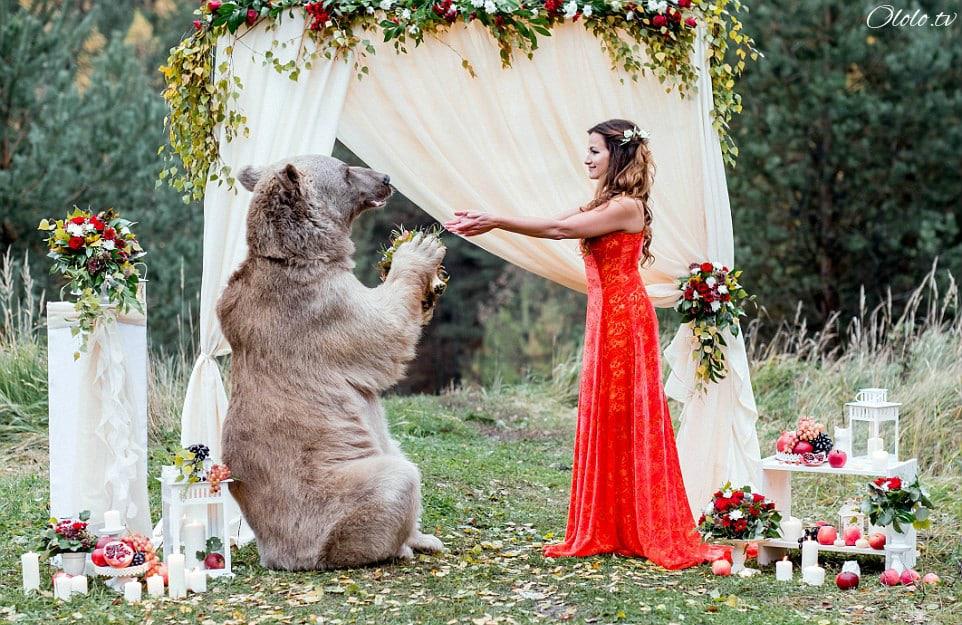 Свадьба по-русски: медведь благословляет жениха и невесту рис 9