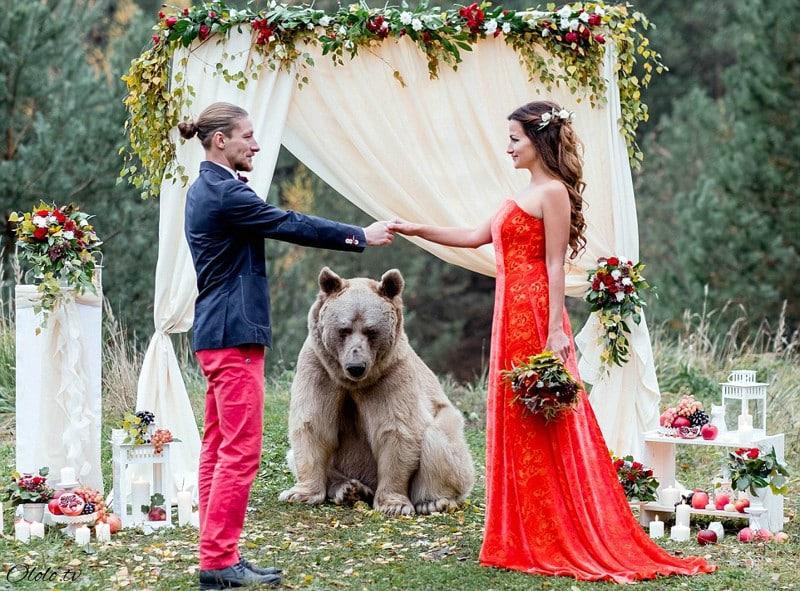 Свадьба по-русски: медведь благословляет жениха и невесту рис 6