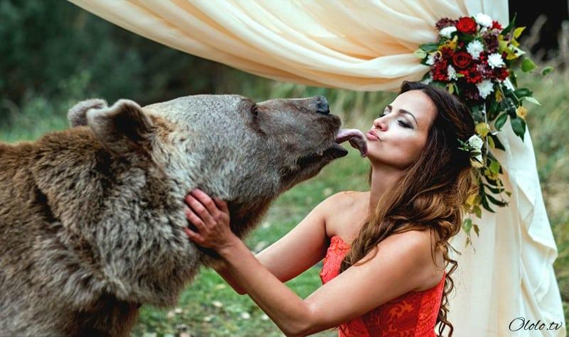 Свадьба по-русски: медведь благословляет жениха и невесту рис 2