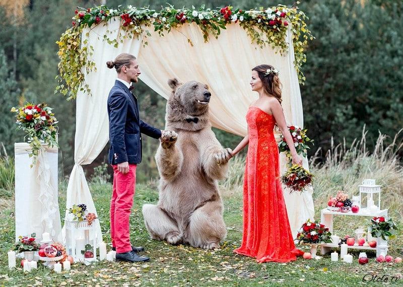 Свадьба по-русски: медведь благословляет жениха и невесту рис 12