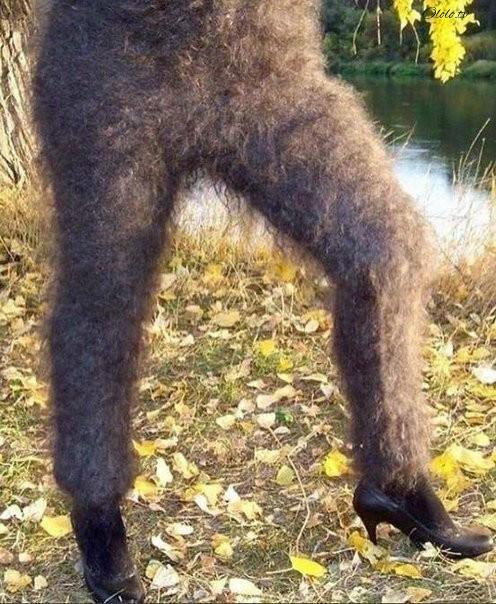 Оренбургские пуховые лосины: и носятся, и колются рис 6