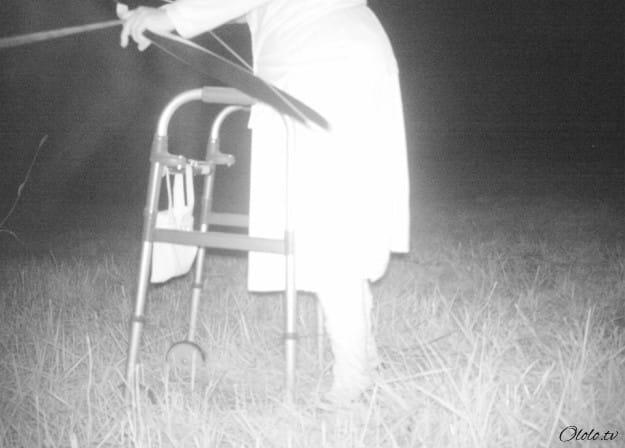 Полиция установила камеру ночного видения, чтобы найти пуму, но ситуация вышла из-под контроля рис 3