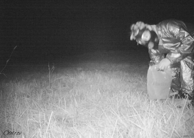 Полиция установила камеру ночного видения, чтобы найти пуму, но ситуация вышла из-под контроля рис 4