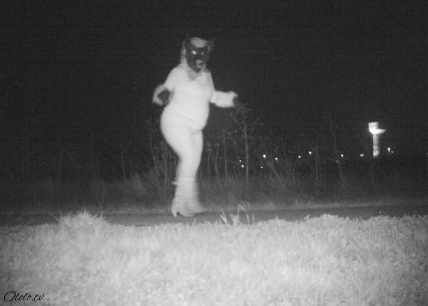 Полиция установила камеру ночного видения, чтобы найти пуму, но ситуация вышла из-под контроля рис 6