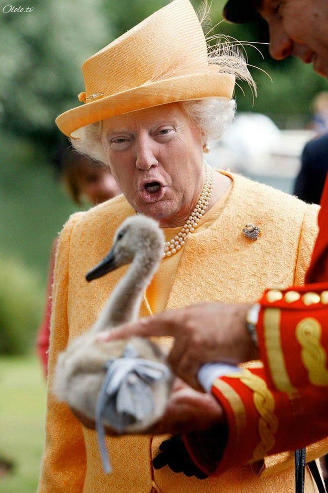 Королева Елизавета с лицом Дональда Трампа рис 4