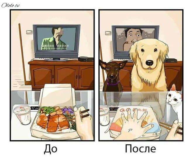 Ваша жизнь до и после появления собаки в картинках рис 2