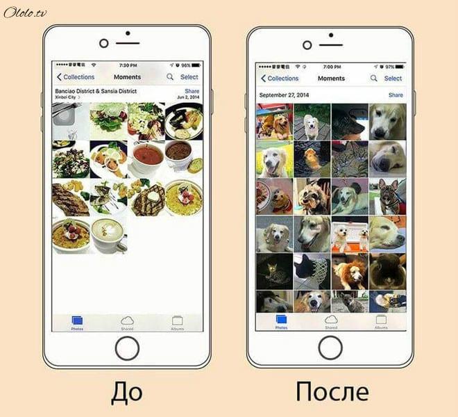 Ваша жизнь до и после появления собаки в картинках рис 3