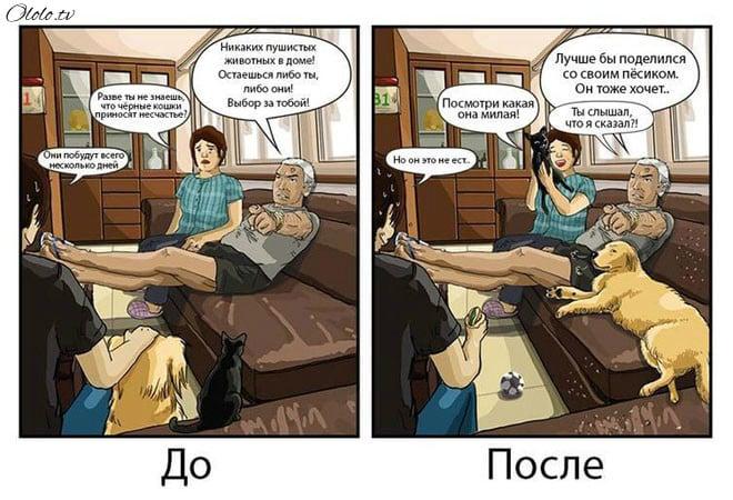 Ваша жизнь до и после появления собаки в картинках рис 4