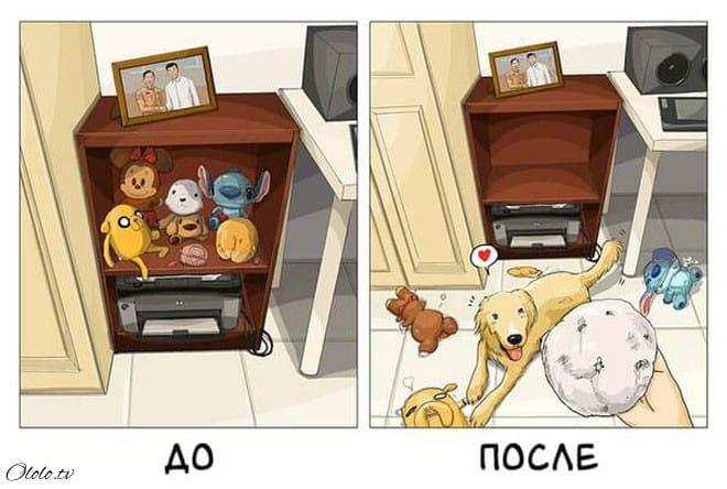 Ваша жизнь до и после появления собаки в картинках рис 7