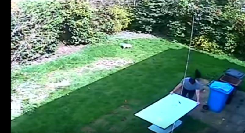 Мужчина решил вынеси стеклянный стол во двор, но что-то пошло не так. Видео