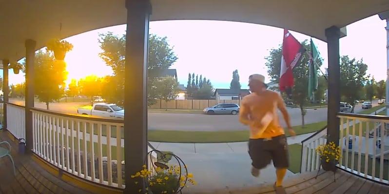 Мужчина решил выйти из дому, но cтая скунсов заставила его спешно вернуться обратно. Видео