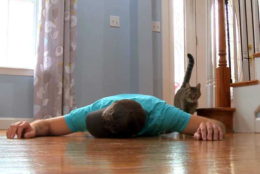 """Парень сымитировал свою """"гибель"""" на глазах у кота и собаки. Их реакция не заставила себя долго ждать!"""