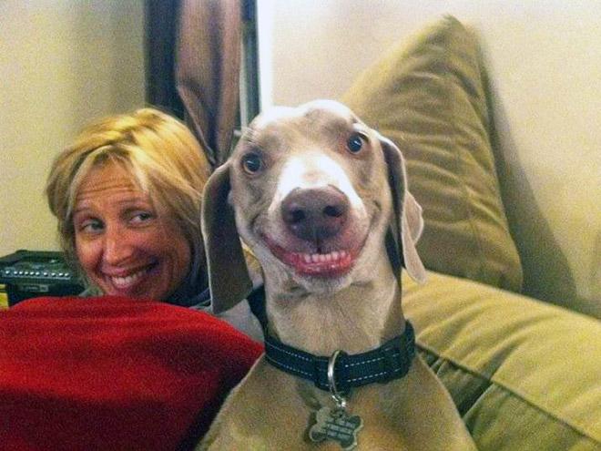 18 собак-улыбак со всего интернета! рис 12