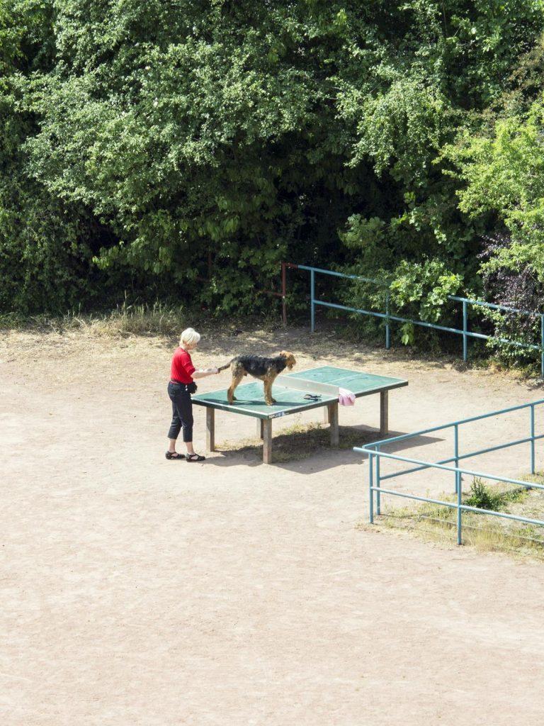 Когда всё пошло не по плану! :) 5 лет из жизни теннисного стола, который так и не узнал, что такое спорт! рис 2