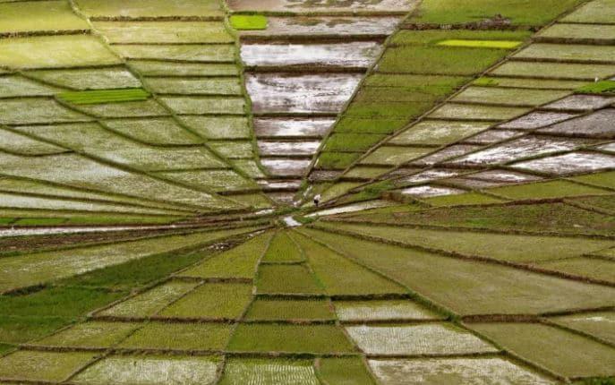 15 оптических иллюзий, которые заставят ваш мозг поднапрячься! рис 6