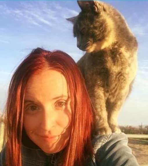 17 смешных и нелепых селфи с котами