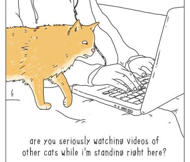 20 комиксов о том, что бы сказали животные, если бы они могли говорить! 9