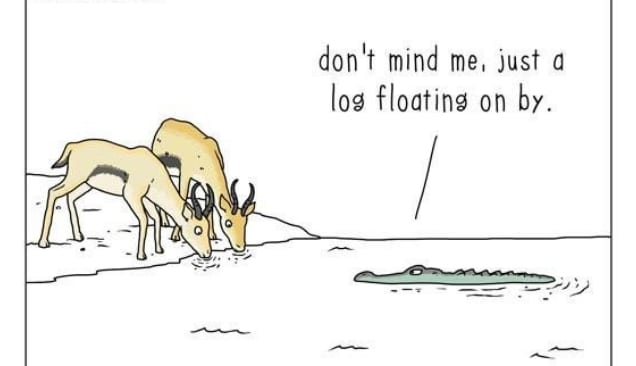 20 комиксов о том, что бы сказали животные, если бы они могли говорить! 20