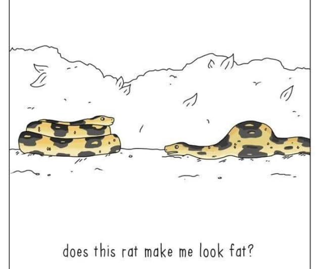 20 комиксов о том, что бы сказали животные, если бы они могли говорить! 17