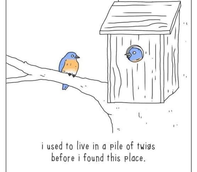 20 комиксов о том, что бы сказали животные, если бы они могли говорить! 4