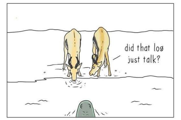 20 комиксов о том, что бы сказали животные, если бы они могли говорить! 11