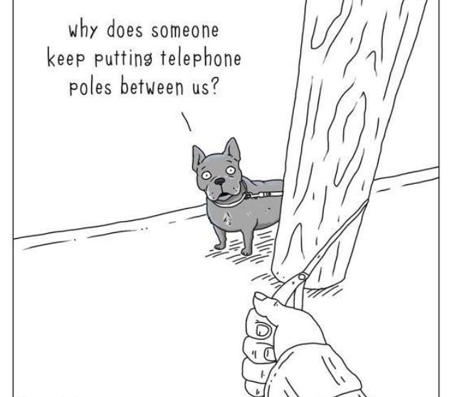 20 комиксов о том, что бы сказали животные, если бы они могли говорить! 10