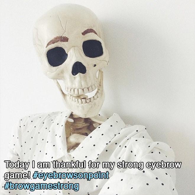 скелет рис 2