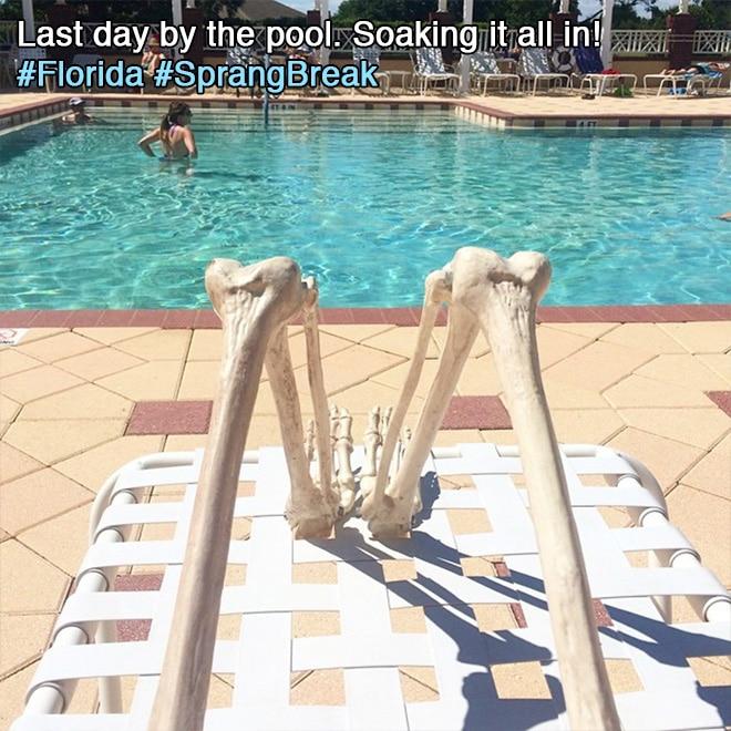 скелет у бассейна