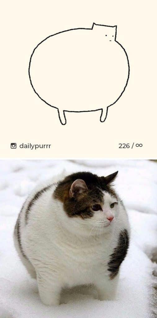 рисунки котов 17