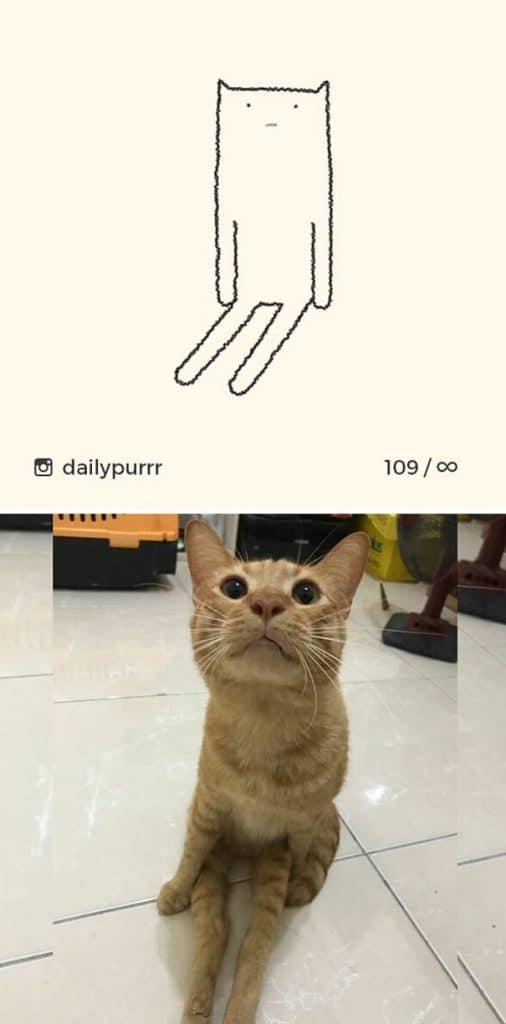 рисунки котов 15