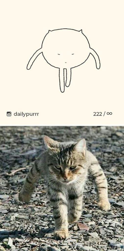 рисунки котов 13