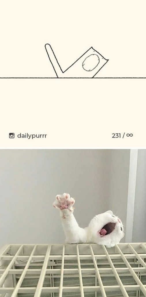 рисунки котов 25