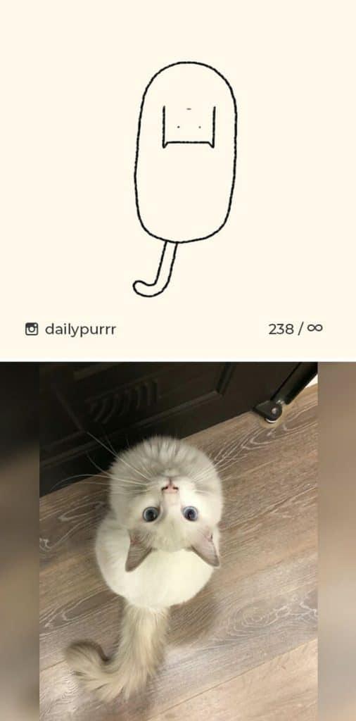 рисунки котов 10